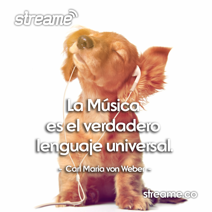 Streame is an application of a radio catalog. Facebook flyer.